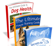 The Ultimate Guide to Dog Health Review – How to Handle Pet Emergency