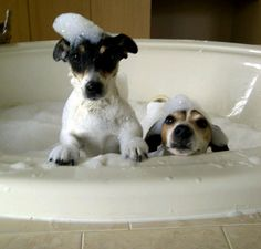 2 jacks in a tub