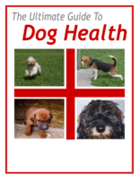 the ultimate guide to dog health