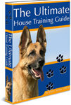 The ultimate house training guide review