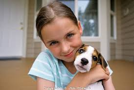 jack russell and girl