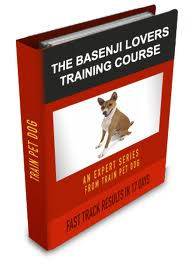 basenji dog training