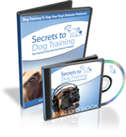 secrets to dog training review